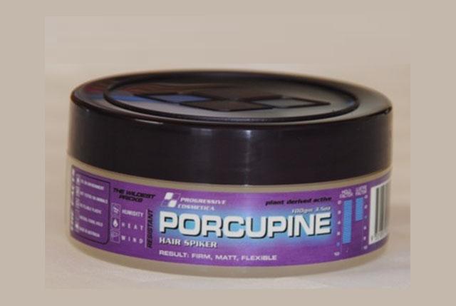 Porcupine-image